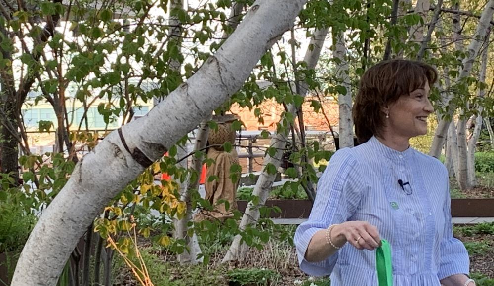 Ambassador Pascale Baeriswyl next to the adopted Gray Birch tree.